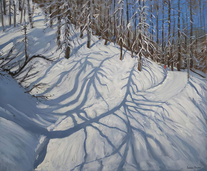 Fir Tree Shadows, Tignes, 2009 - Andrew Macara