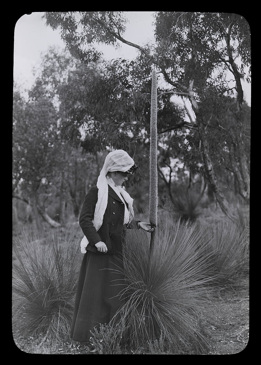 Amy et Xanthorrhoea - Archibald James Campbell