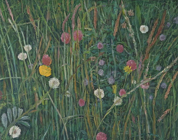 Plantes du Machair, 2008 - Ruth Addinall