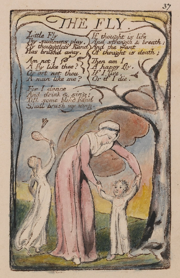 Chansons dinnocence et dexpérience, Planche 37, The Fly (Bentley 40) - William Blake
