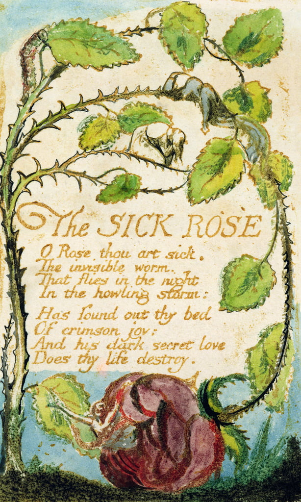 The Sick Rose, de Songs of Innocence (eau-forte, encre et wc) - William Blake